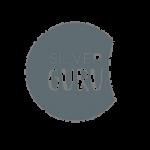 Logo Silver Guru